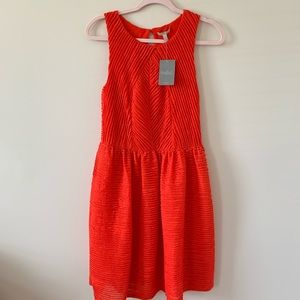 NWT! Anthropologie Bordeaux ruffle poppy dress #46